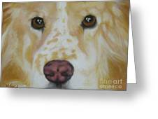 Murphy Greeting Card