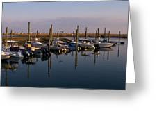 Murrels Inlet South Carolina Greeting Card