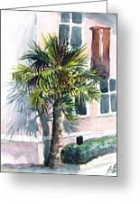 Museum Palm Greeting Card