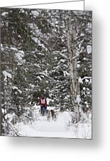 Musher In The Forest Greeting Card by Tim Grams
