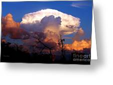 Mushroom Cloud At Sunset Greeting Card by Doris Wood