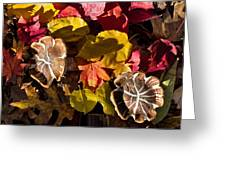 Mushrooms In Fall Leaves Greeting Card