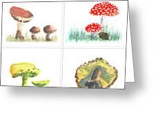 Mushrooms On Parade Collage Greeting Card