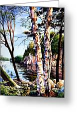 Muskoka Reflections Greeting Card