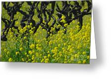 Mustard And Old Vines Greeting Card