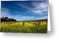 Mustard In The Vineyard 2 Greeting Card