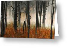 Mute Dog Forest Triptych Panel 1 Greeting Card