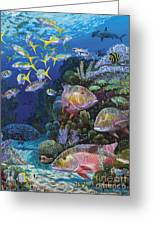 Mutton Reef Re002 Greeting Card