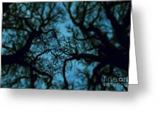 My Blue Dark Forest Greeting Card