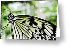 My Butterfly Greeting Card