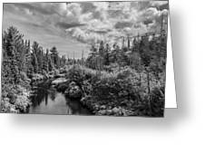 My Favorite Maine Image Greeting Card