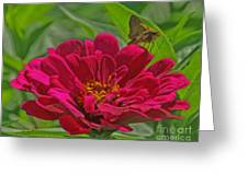 My Flower Greeting Card