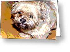 My Friend Lhasa Apso Greeting Card