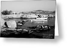 My Greek Oasis Greeting Card
