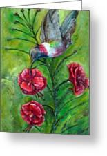 My Hummingbird  Greeting Card