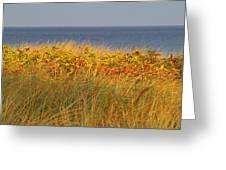 My Love Awaits Me By The Sea 2 Greeting Card