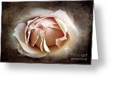 My Love Is Unfolding Greeting Card