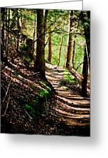 My Path Greeting Card