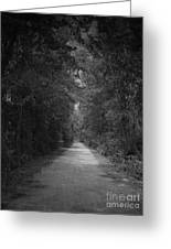 My Pathway Greeting Card