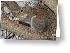 My Peanut Greeting Card