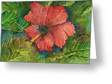 My Quiet Place-hibuscus Flower Greeting Card
