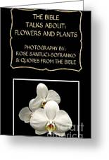 My The Bible Talks About Flowers And Plants Book Greeting Card