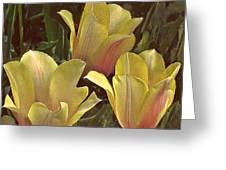 My Three Tulips Greeting Card