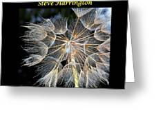 My Website Greeting Card