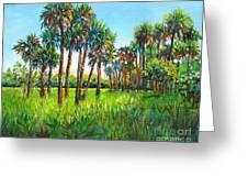 Myakka Palms Greeting Card