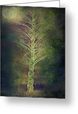 Mysterious Tree In Moonlight Greeting Card
