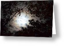 Mystery Of Moonlight Greeting Card