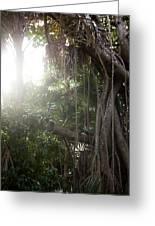 Mystic Jungle Greeting Card