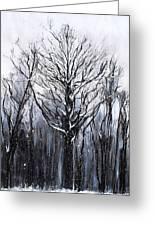 Mystic Winter Greeting Card