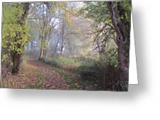 Mystical Path Greeting Card