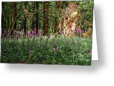 Mystical Woods Greeting Card