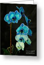 Mystique Blue Orchids Greeting Card