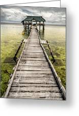 Nalusuan Island Pier Greeting Card