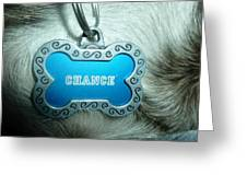 Name Tag Greeting Card
