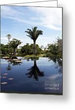 Naples Botanical Garden  3083 Greeting Card