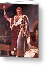 Napoleon In His Coronation Robes  Greeting Card