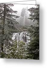 Narada Fall Mt Rainier II Greeting Card