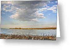 Narew River Near Serock In The Vicinity Of Warsaw Greeting Card