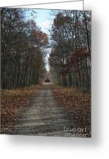 Narrow Path On Recovery Road Greeting Card