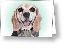Nathan - A Former Shelter Sweetie Greeting Card