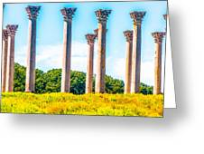National Capitol Columns Greeting Card