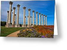 National Capitol Columns Greeting Card