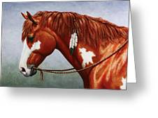 Native American Pinto Horse Greeting Card