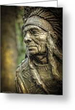 Native American Statue At Niagara Falls State Park Greeting Card
