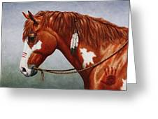 Native American War Horse Greeting Card by Crista Forest