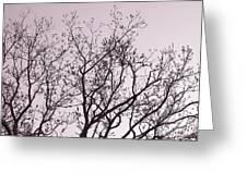 Native Texas Pecan Silhouette Greeting Card
